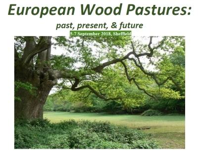 european-wood-pastures-small_1_orig